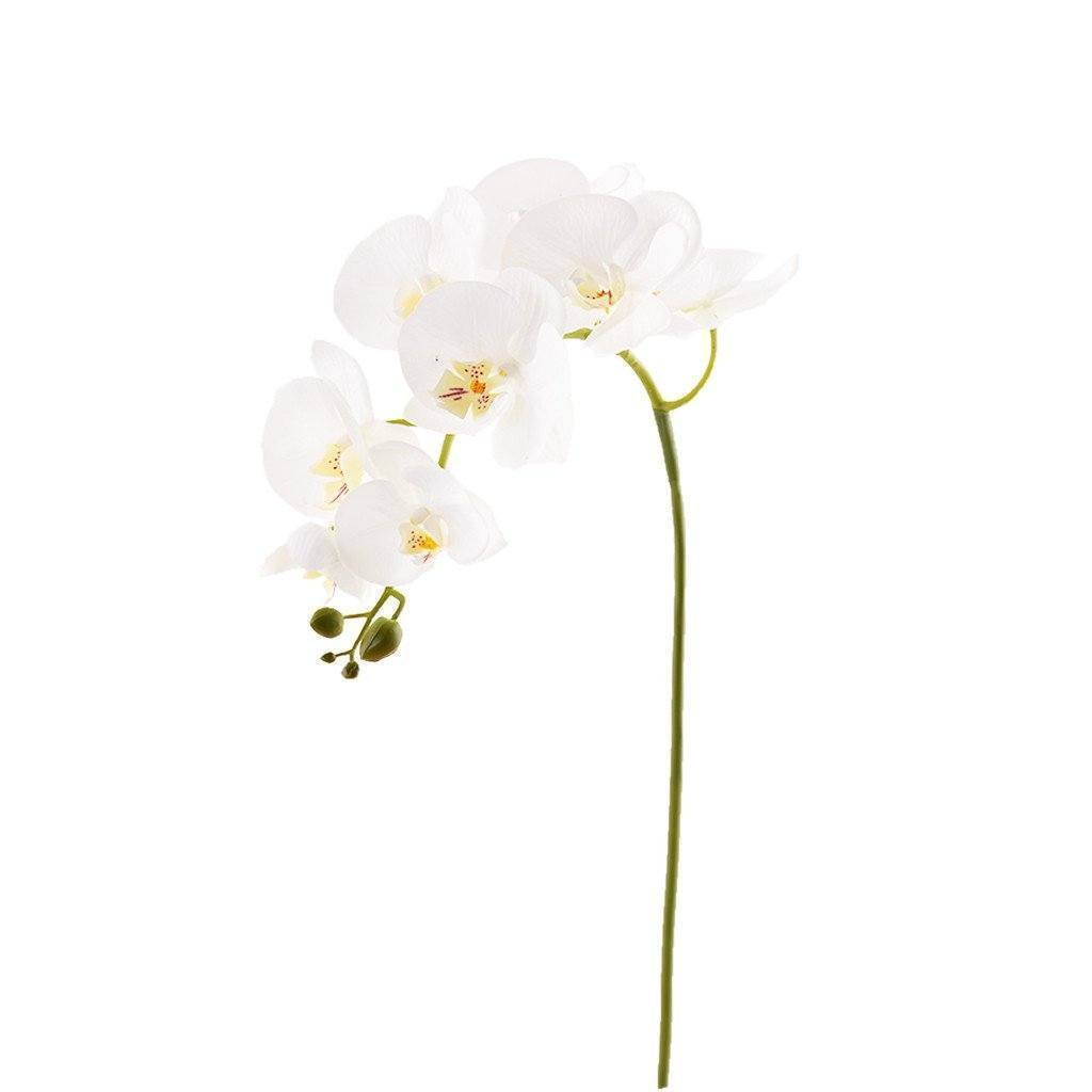 Bloomr Flowers Orchid Stem artificial flowers artificial trees artificial plants faux florals