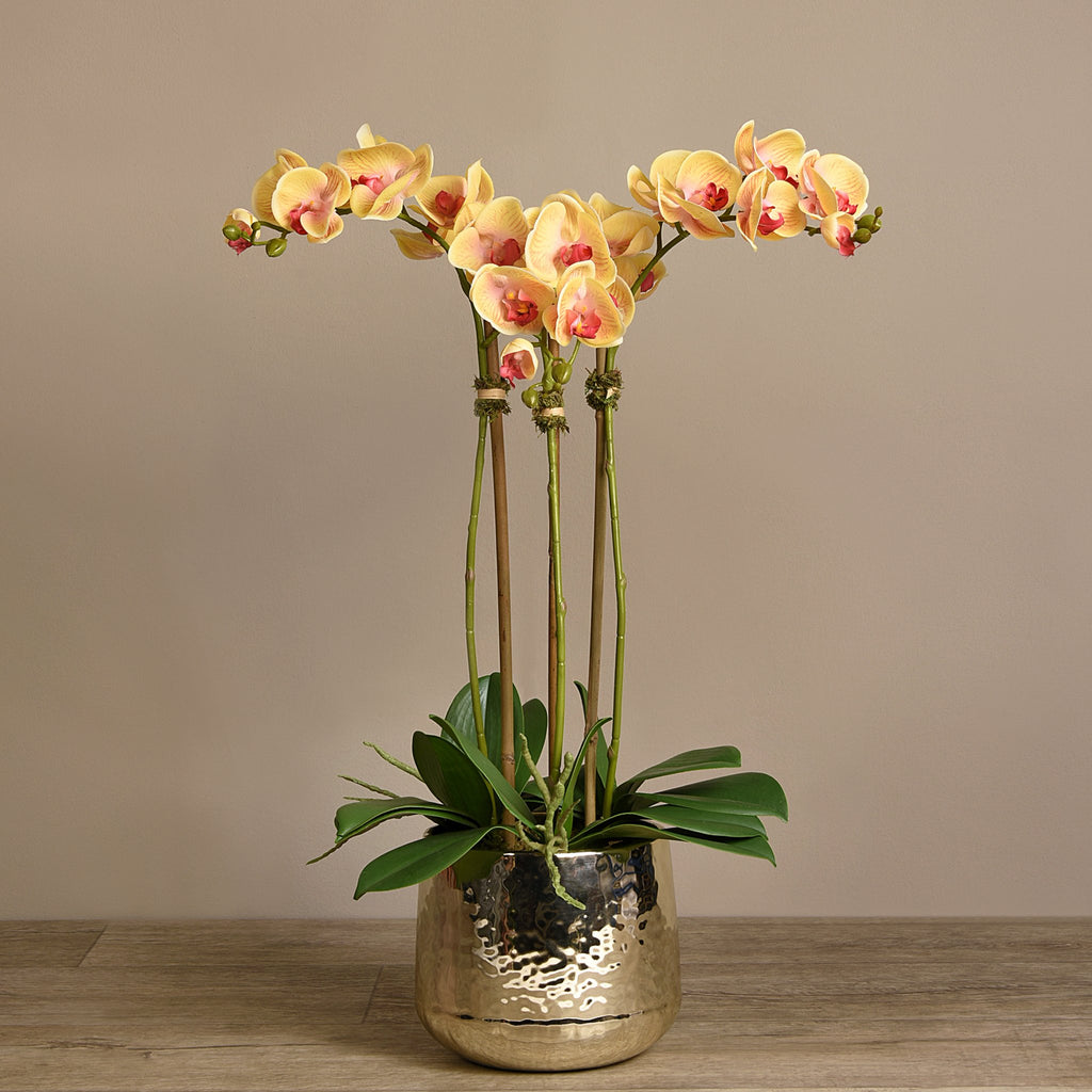 Bloomr Flowers Parisian Orchid Arrangement artificial flowers artificial trees artificial plants faux florals