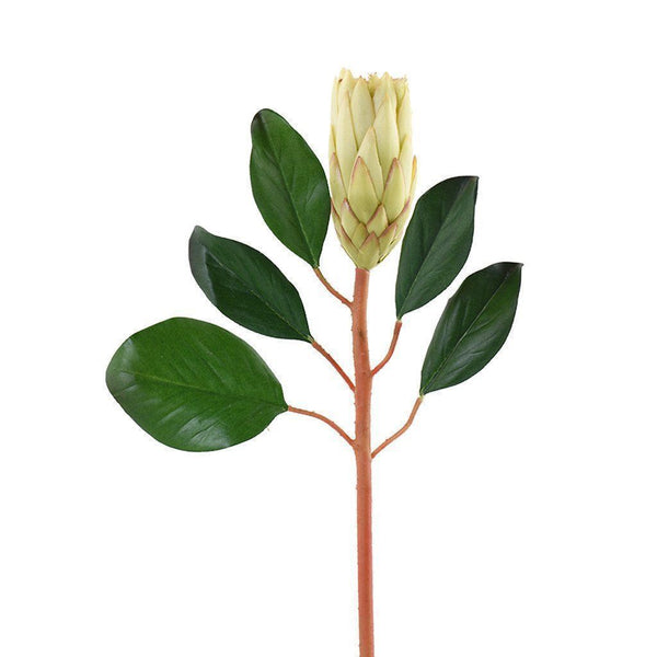 Bloomr Flowers Protea artificial flowers artificial trees artificial plants faux florals