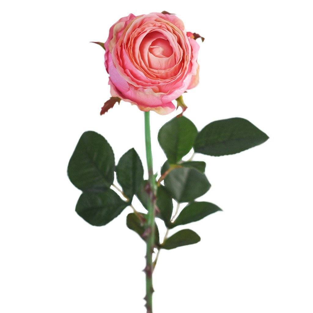 Bloomr Flowers Rose artificial flowers artificial trees artificial plants faux florals
