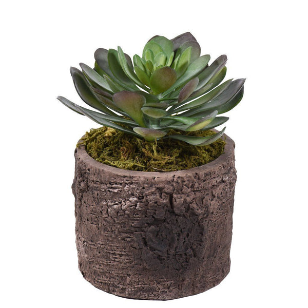 Bloomr Flowers Rustic Potted Succulent artificial flowers artificial trees artificial plants faux florals