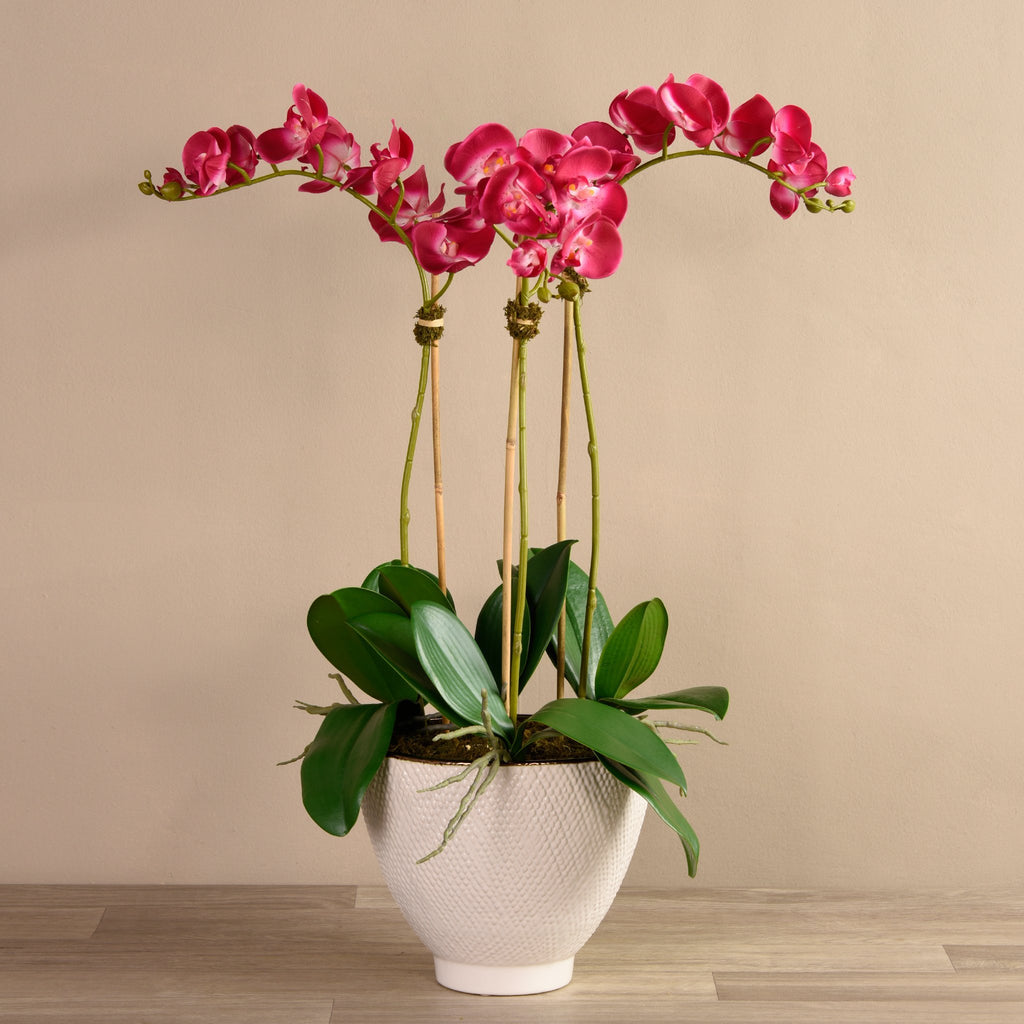 Bloomr Flowers Small / Brown Ceramic / magenta Rustic Orchid Arrangement artificial flowers artificial trees artificial plants faux florals