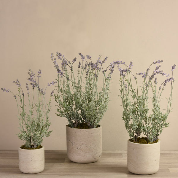 Bloomr Flowers Small Lavender Potted artificial flowers artificial trees artificial plants faux florals
