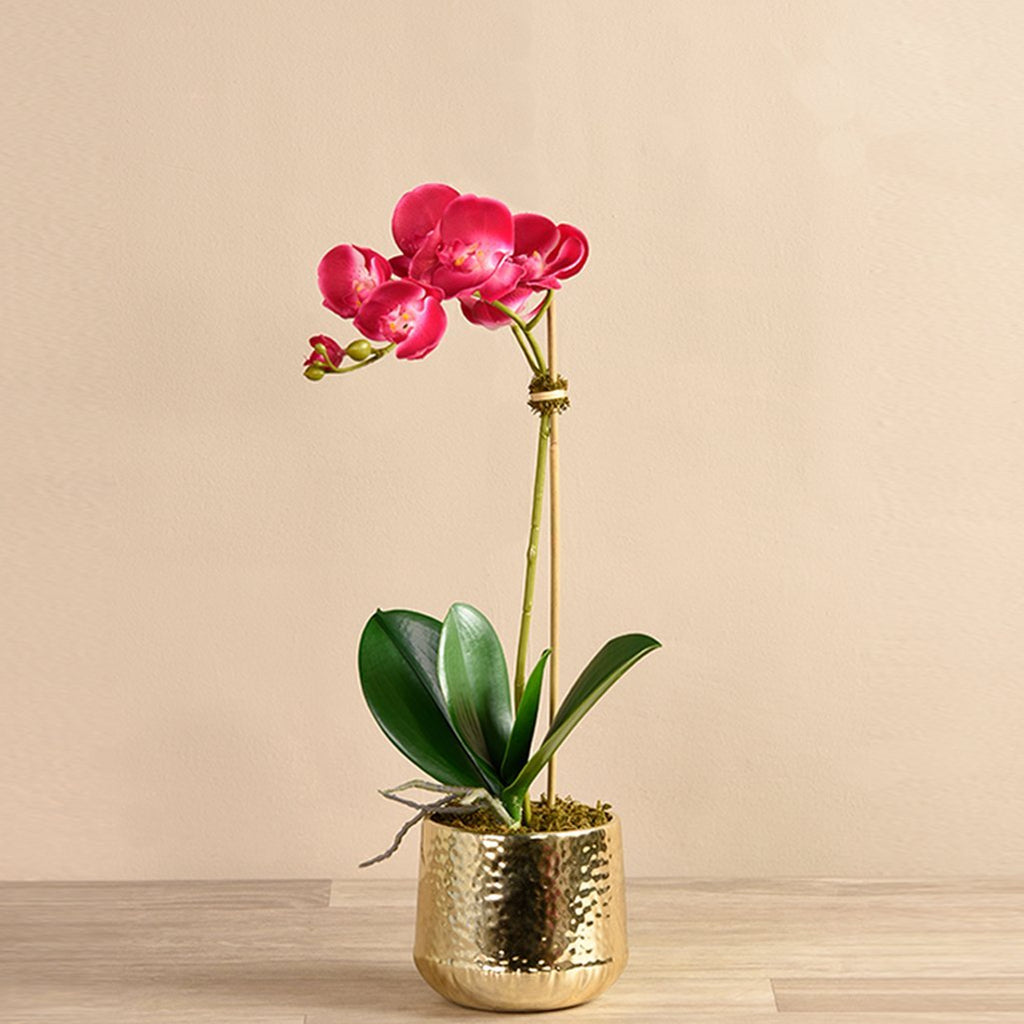 Bloomr Flowers Small / magenta Parisian Orchid Arrangement artificial flowers artificial trees artificial plants faux florals