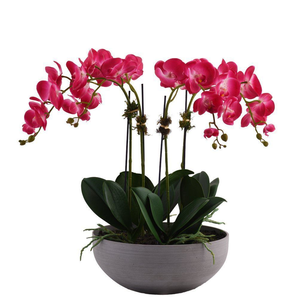 Bloomr Flowers Small / magenta Sleek Orchid Arrangement artificial flowers artificial trees artificial plants faux florals