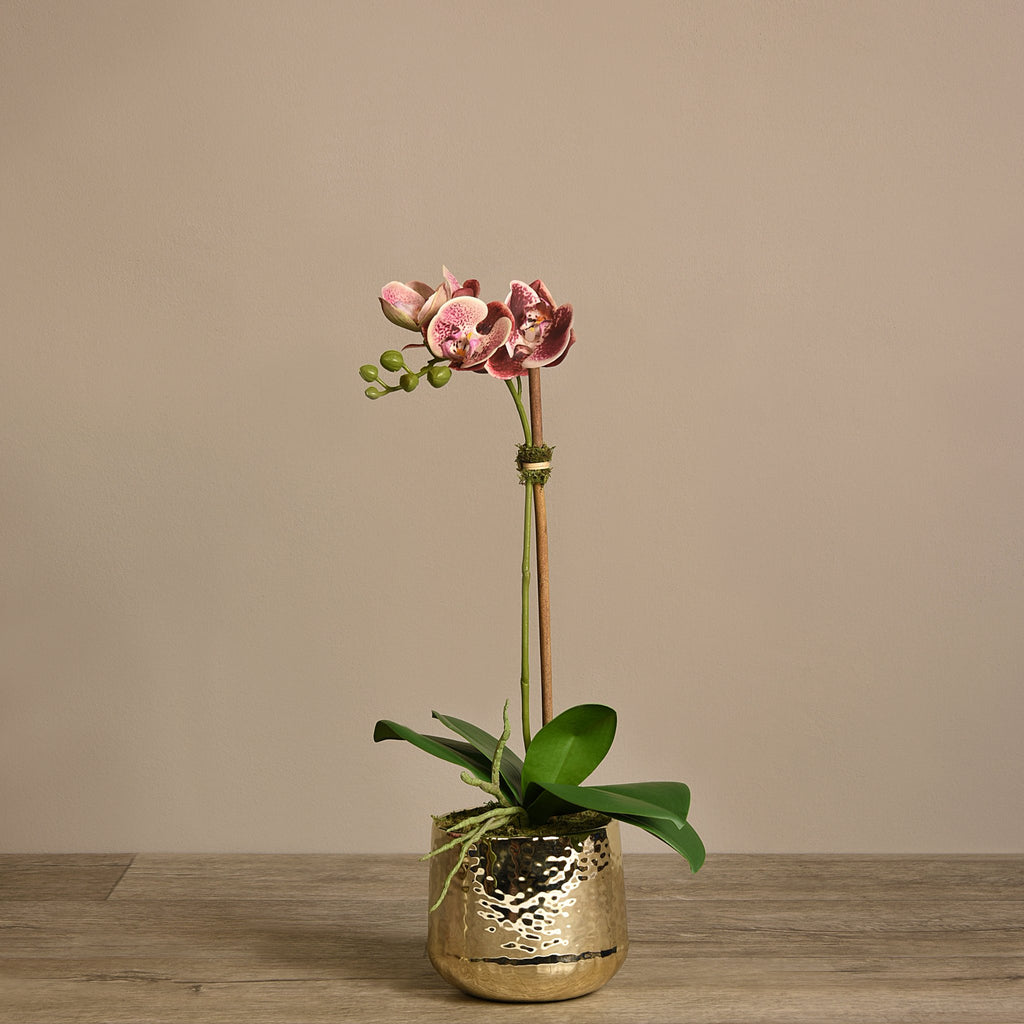 Bloomr Flowers Small / Maroon Parisian Orchid Arrangement artificial flowers artificial trees artificial plants faux florals