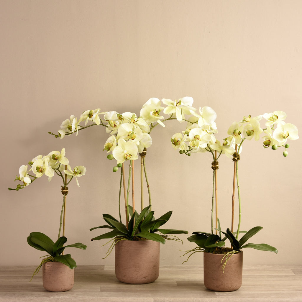 Bloomr Flowers Small Meadow Orchid Arrangement artificial flowers artificial trees artificial plants faux florals