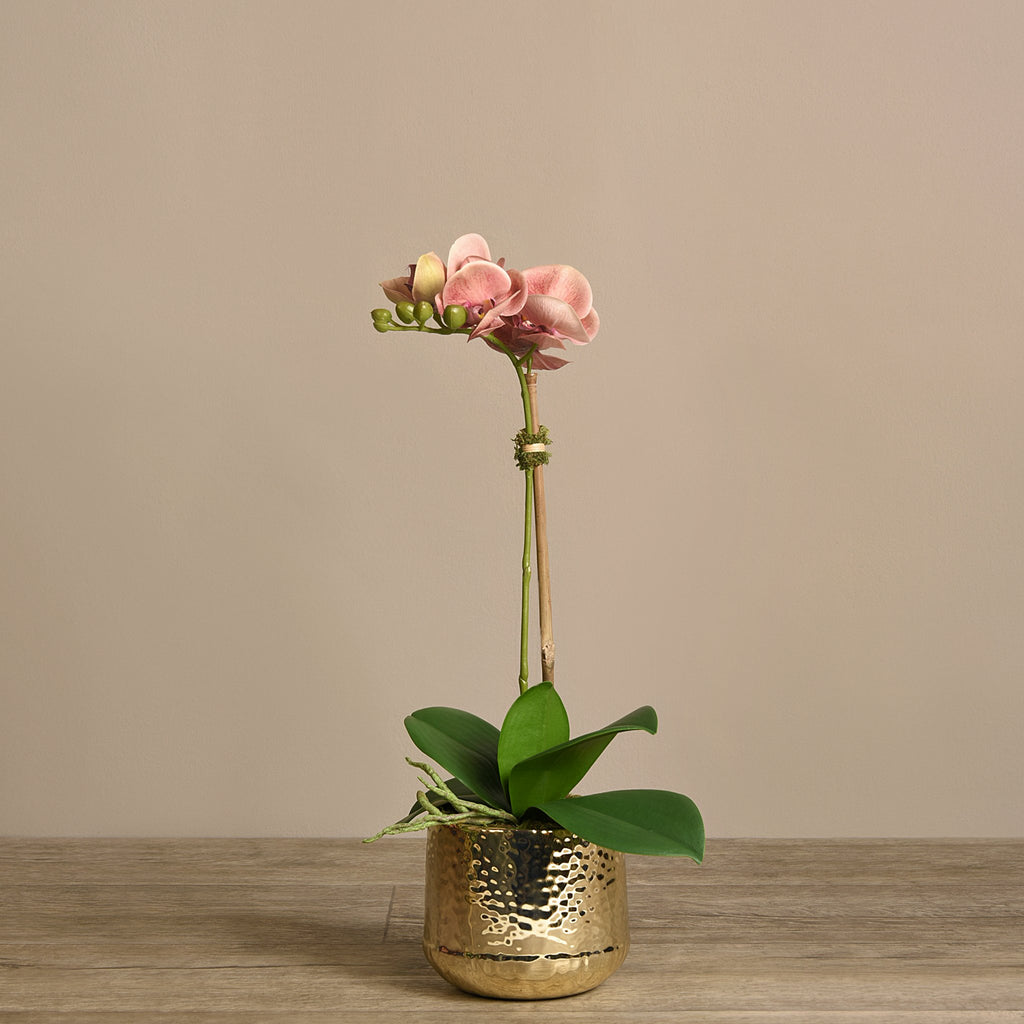 Bloomr Flowers Small / Pink Parisian Orchid Arrangement artificial flowers artificial trees artificial plants faux florals