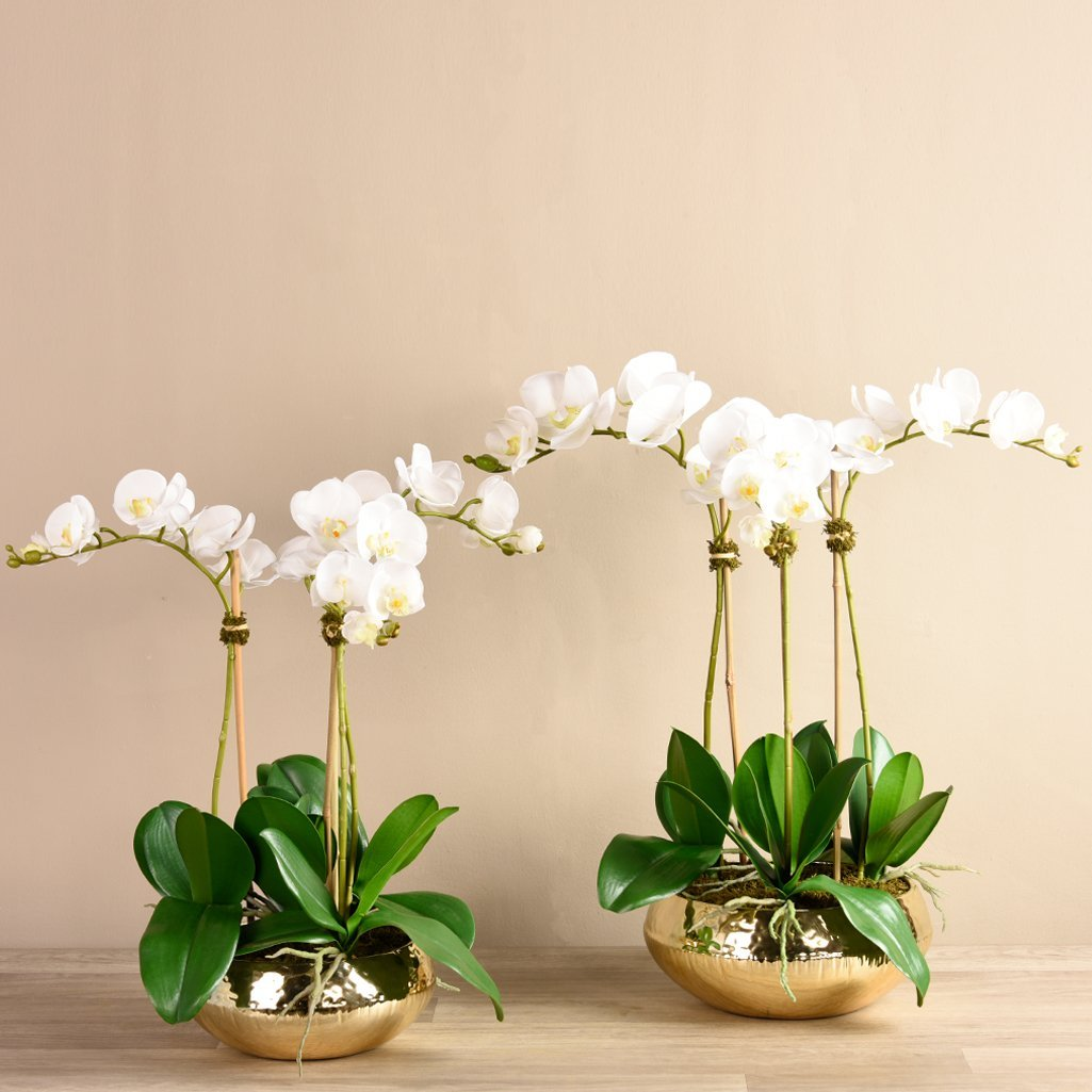 Artificial Chic Orchid Arrangement, Faux Chic Orchid Arrangement, Fake Chic Orchid Arrangement  - Bloomr