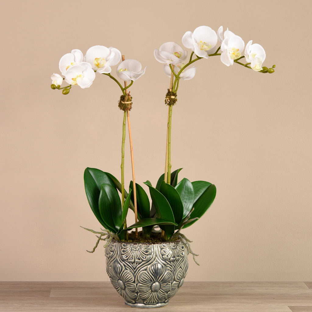 Bloomr Flowers Small / White Secret Garden Orchid artificial flowers artificial trees artificial plants faux florals