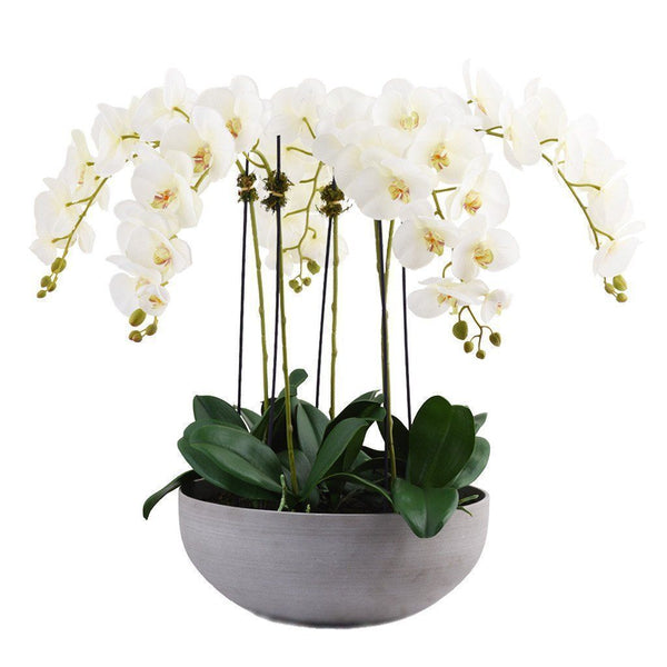Bloomr Flowers Small / White Sleek Orchid Arrangement artificial flowers artificial trees artificial plants faux florals