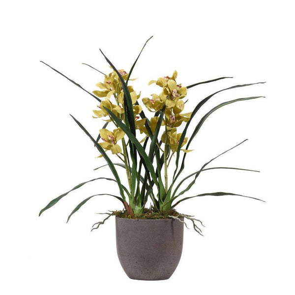 Bloomr Flowers Small / yellow_green Oasis Cymbidium Arrangement artificial flowers artificial trees artificial plants faux florals