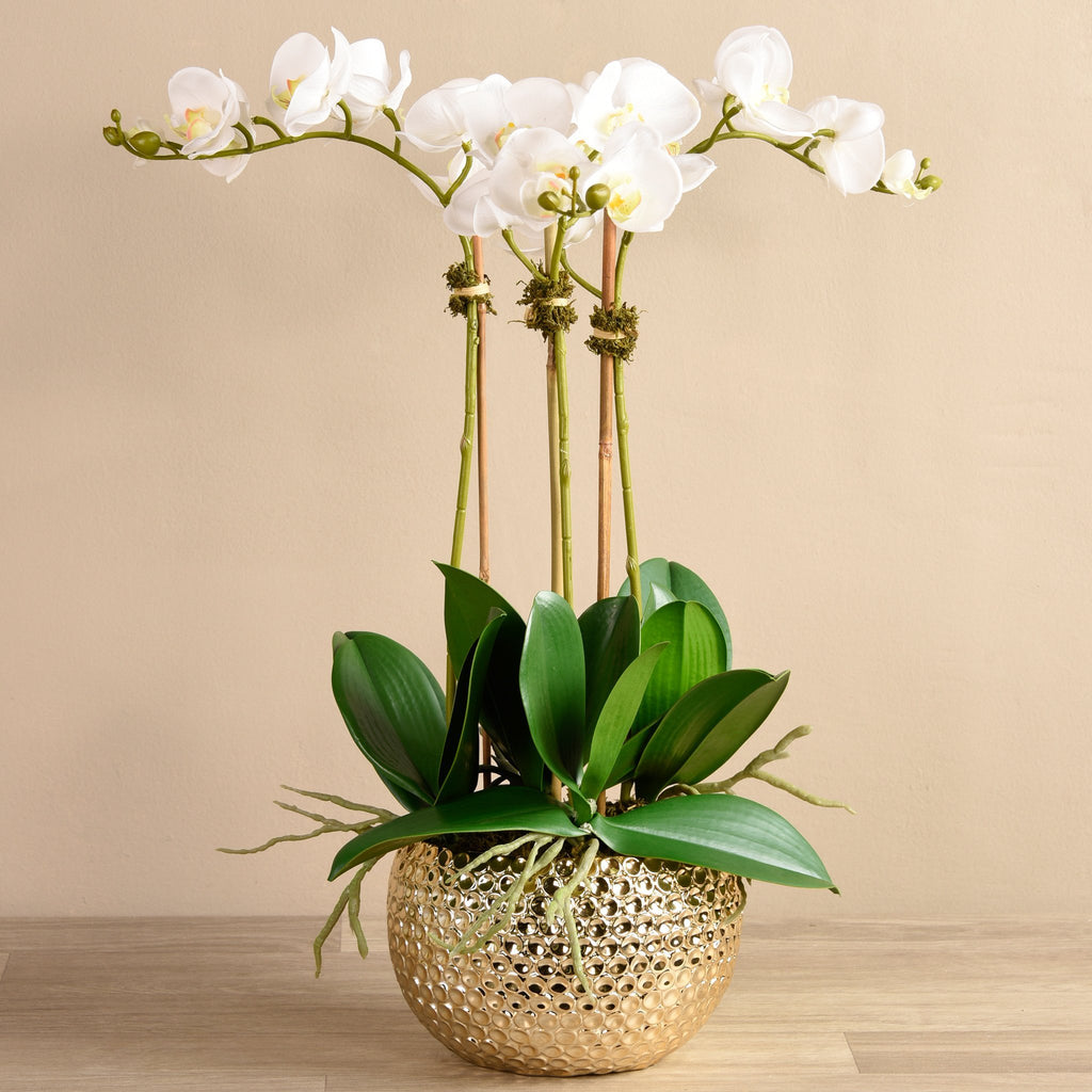 Artificial Duchess Orchid Arrangement, Faux Duchess Orchid Arrangement, Fake Duchess Orchid Arrangement  - Bloomr