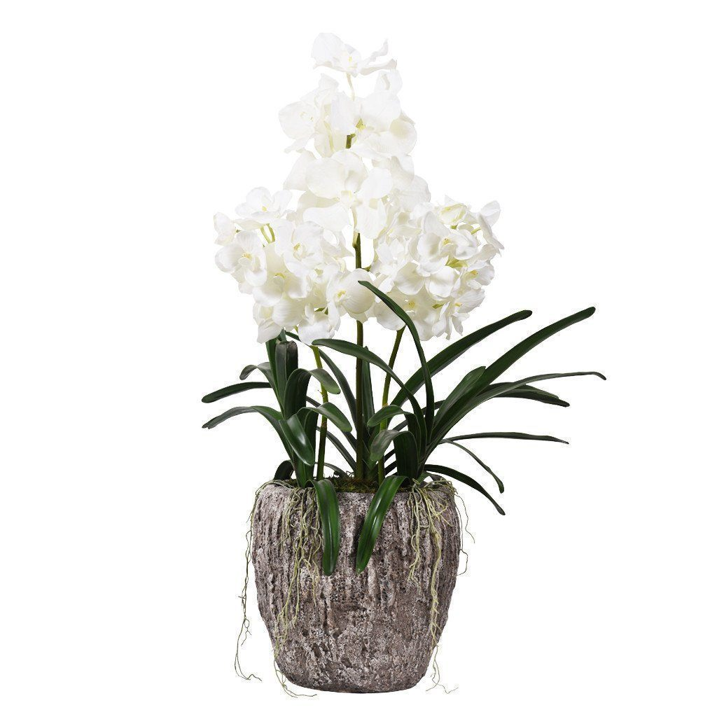 Artificial Earthy Vanda Orchid Arrangement, Faux Earthy Vanda Orchid Arrangement, Fake Earthy Vanda Orchid Arrangement  - Bloomr