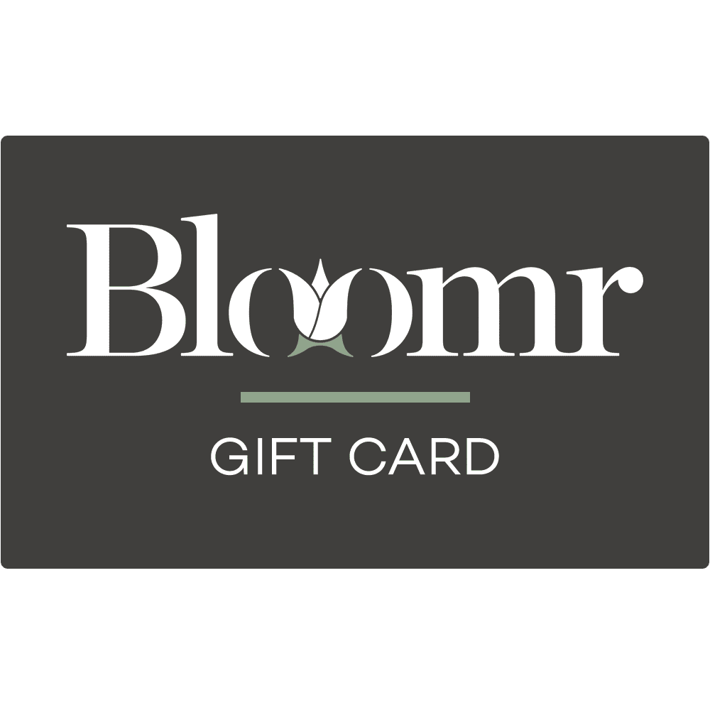 Artificial Gift Card, Faux Gift Card, Fake Gift Card  - Bloomr