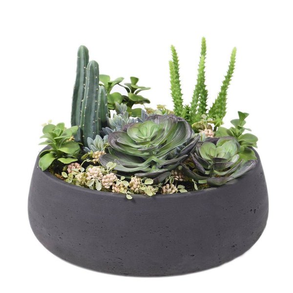 Bloomr Greenery Concrete Black Oasis Succulent & Cactus Arrangement artificial flowers artificial trees artificial plants faux florals