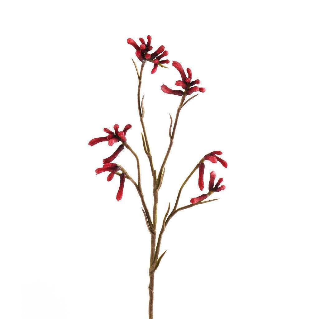 Bloomr Greenery Kangaroo Paw artificial flowers artificial trees artificial plants faux florals