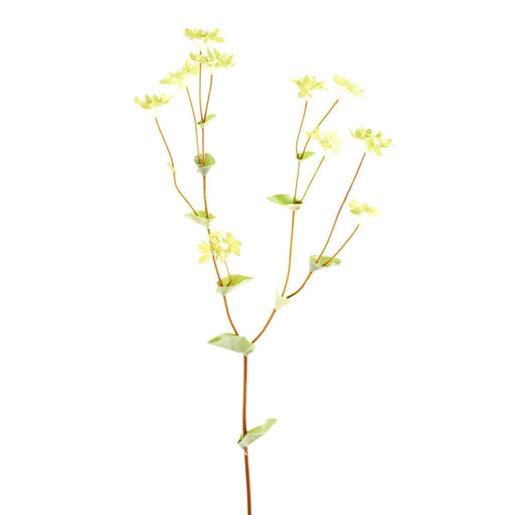 Bloomr Greenery Lady's Mantle artificial flowers artificial trees artificial plants faux florals