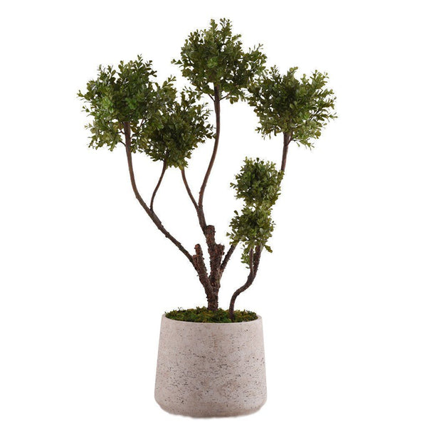 Bloomr Greenery Large Potted Boxwood Plant artificial flowers artificial trees artificial plants faux florals