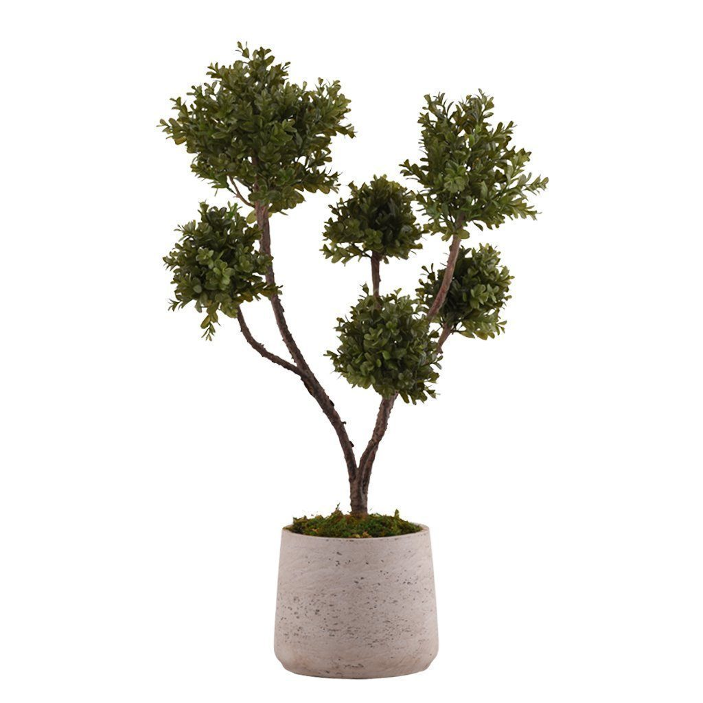 Bloomr Greenery Medium Potted Boxwood Plant artificial flowers artificial trees artificial plants faux florals