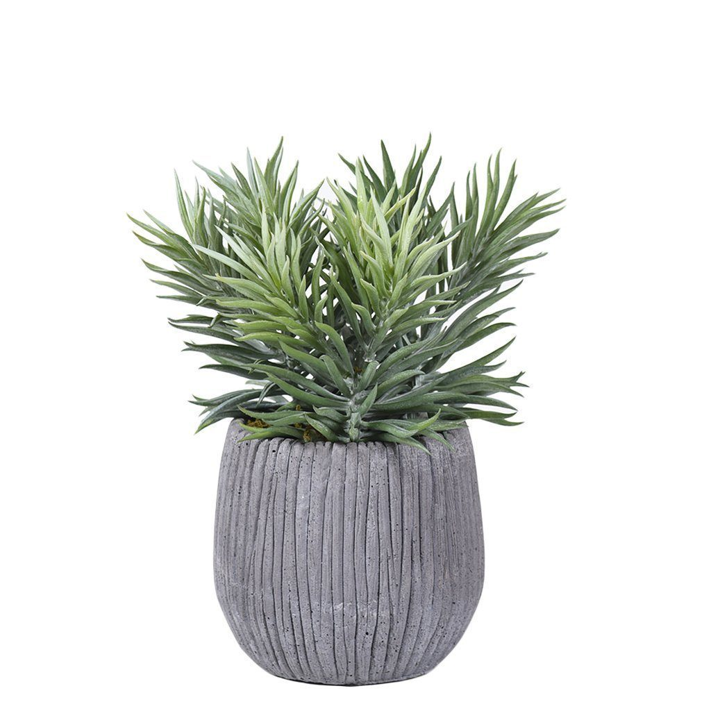 Bloomr Greenery Mini / dusty_green Potted Frond Succulent artificial flowers artificial trees artificial plants faux florals