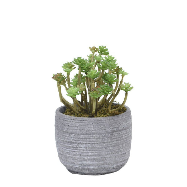 Bloomr Greenery Mini Long Stem Succulent artificial flowers artificial trees artificial plants faux florals
