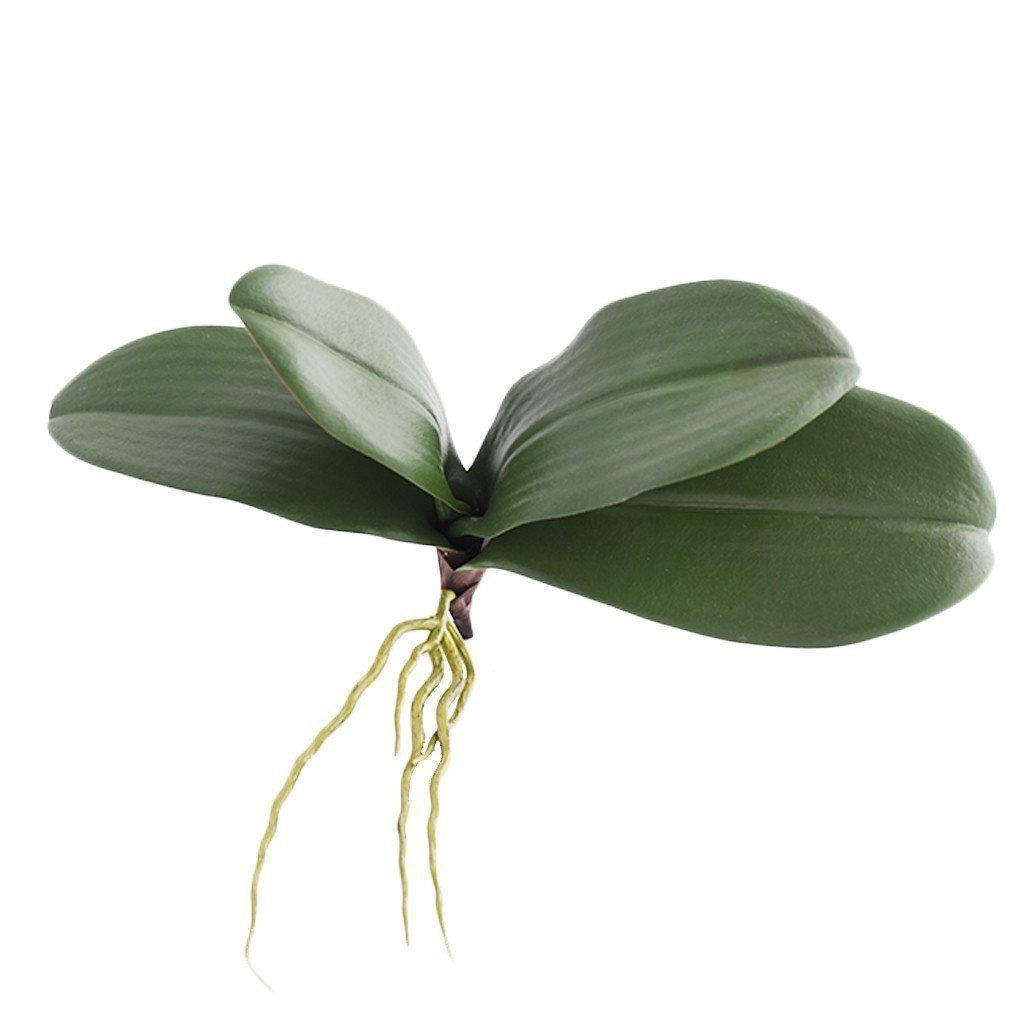 Bloomr Greenery Orchid Leaf artificial flowers artificial trees artificial plants faux florals