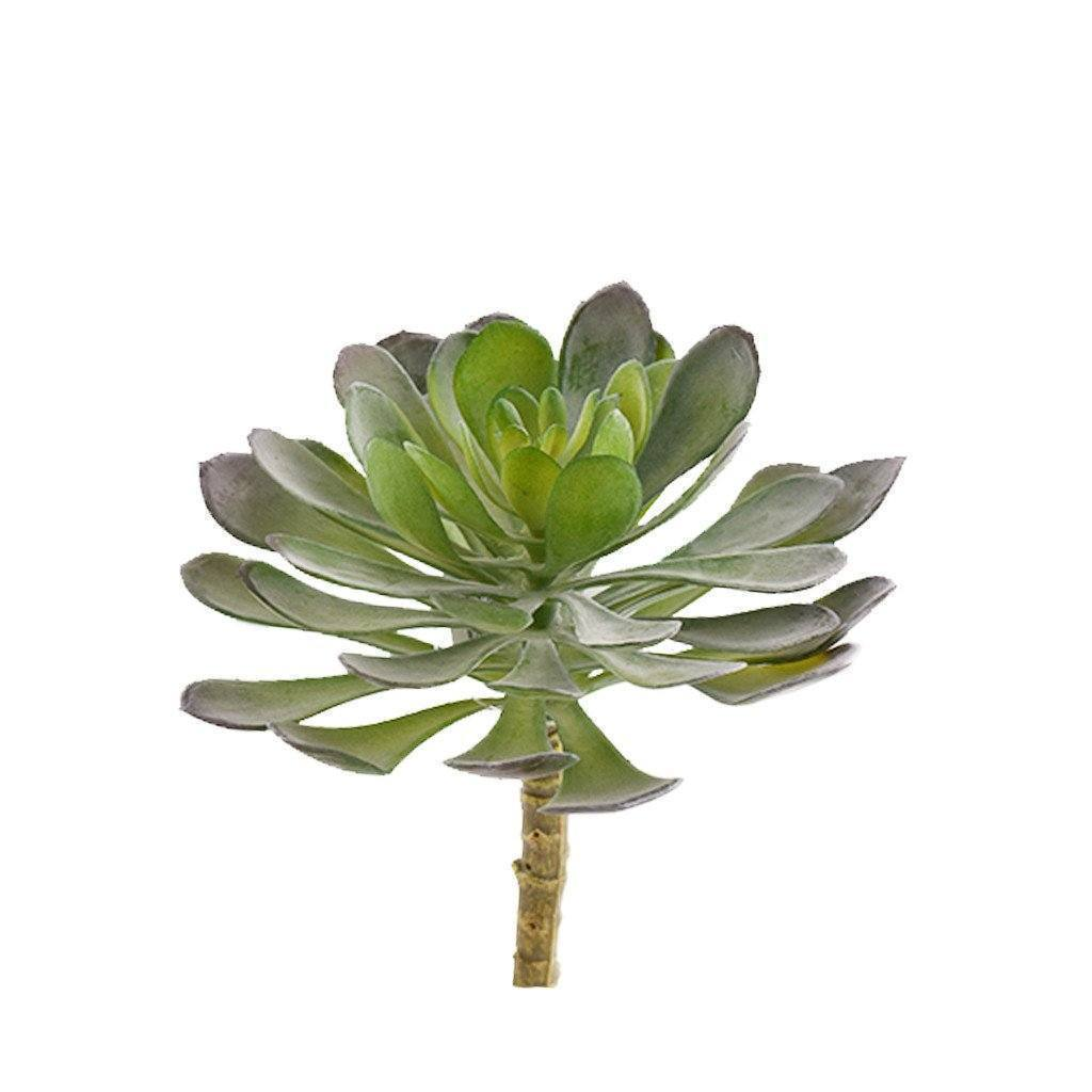 Bloomr Greenery Single Stem Succulent artificial flowers artificial trees artificial plants faux florals
