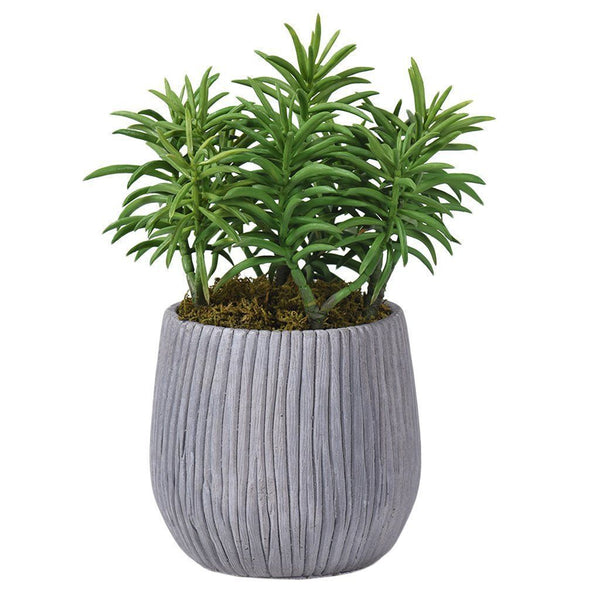 Bloomr Greenery Small / Green Potted Frond Succulent artificial flowers artificial trees artificial plants faux florals