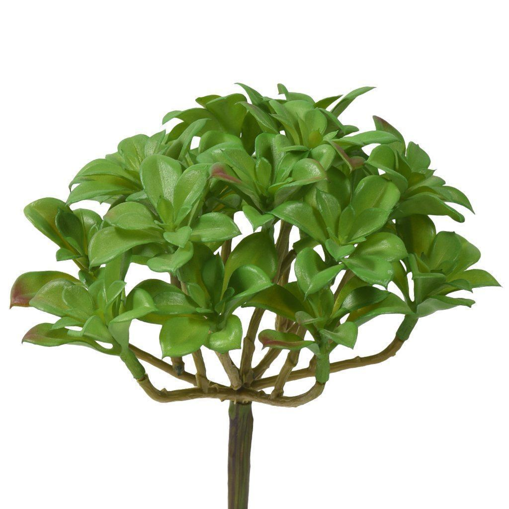 Bloomr Greenery Succulent artificial flowers artificial trees artificial plants faux florals