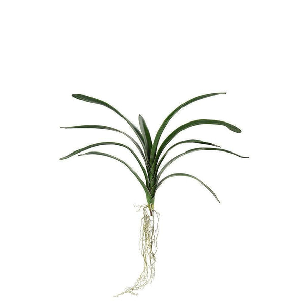 Bloomr Greenery Vanda Leaf Bunch artificial flowers artificial trees artificial plants faux florals