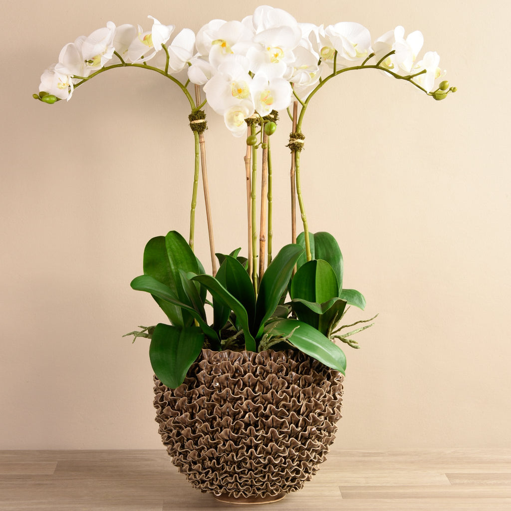 Bloomr Large Shell Orchid Brown artificial flowers artificial trees artificial plants faux florals