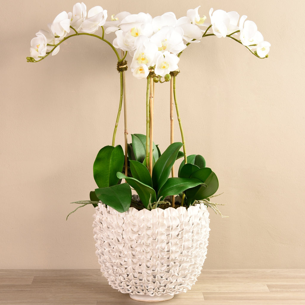 Bloomr Large Shell Orchid White artificial flowers artificial trees artificial plants faux florals