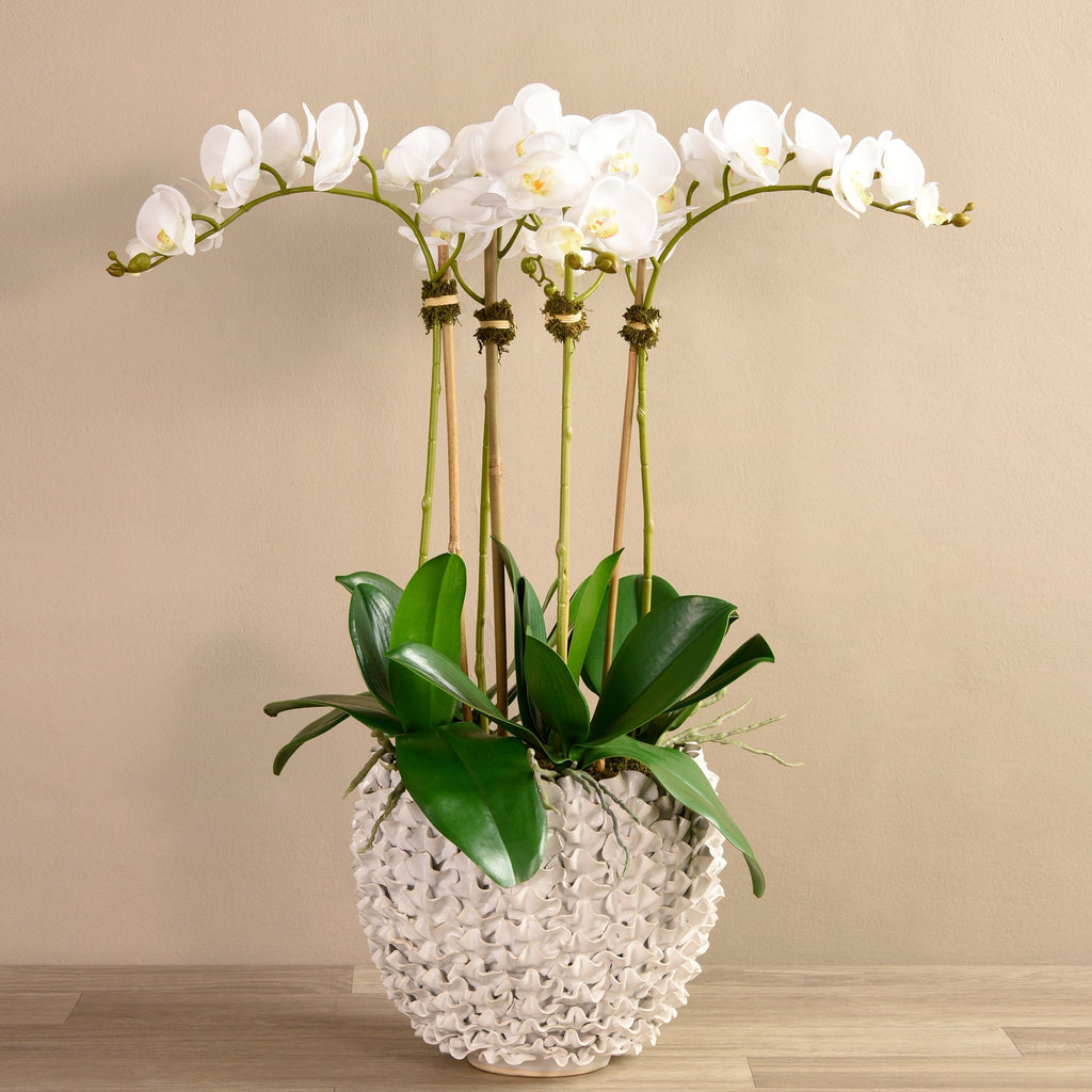 Bloomr Medium Shell Orchid White artificial flowers artificial trees artificial plants faux florals