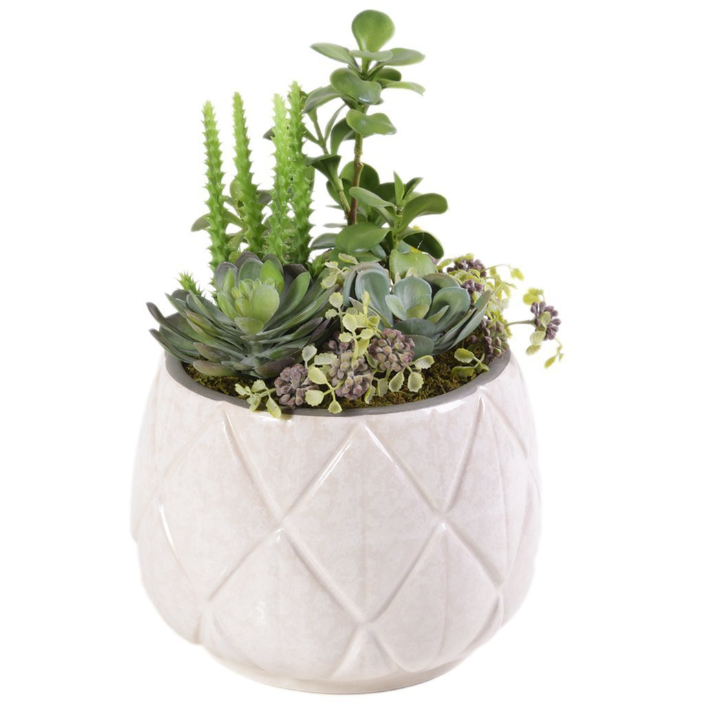 Shop Beautiful Faux Palm Springs Succulent Arrangements Bloomr