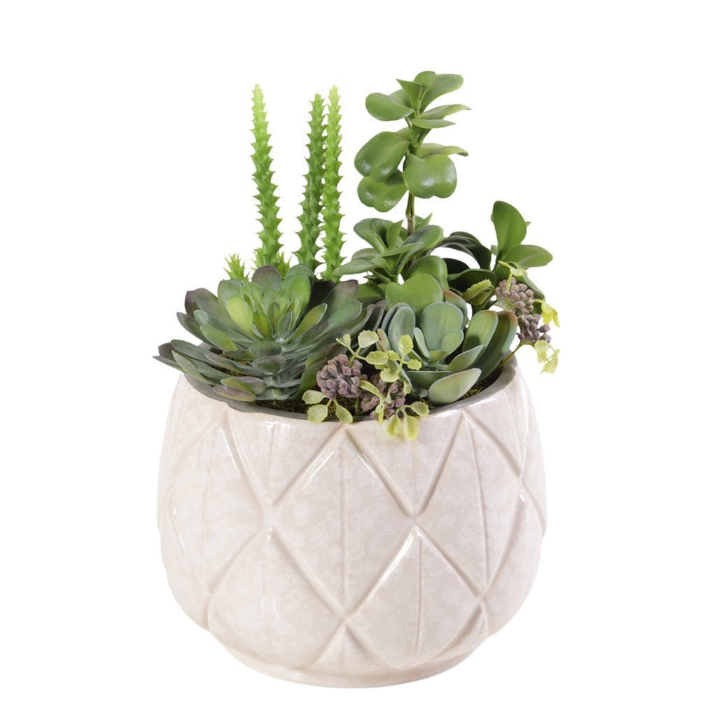 Bloomr Plants Medium Palm Springs Succulent Arrangement artificial flowers artificial trees artificial plants faux florals