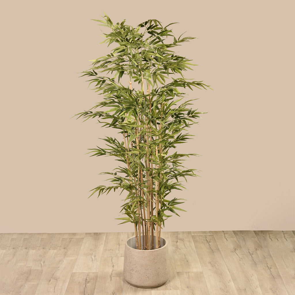 Artificial Bamboo, Faux Bamboo, Fake Bamboo  - Bloomr
