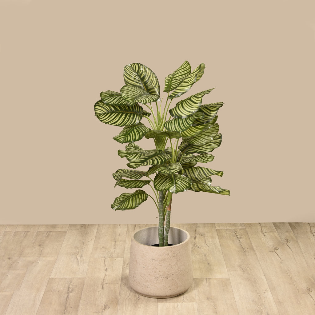 Artificial Calathea Tree, Faux Calathea Tree, Fake Calathea Tree  - Bloomr