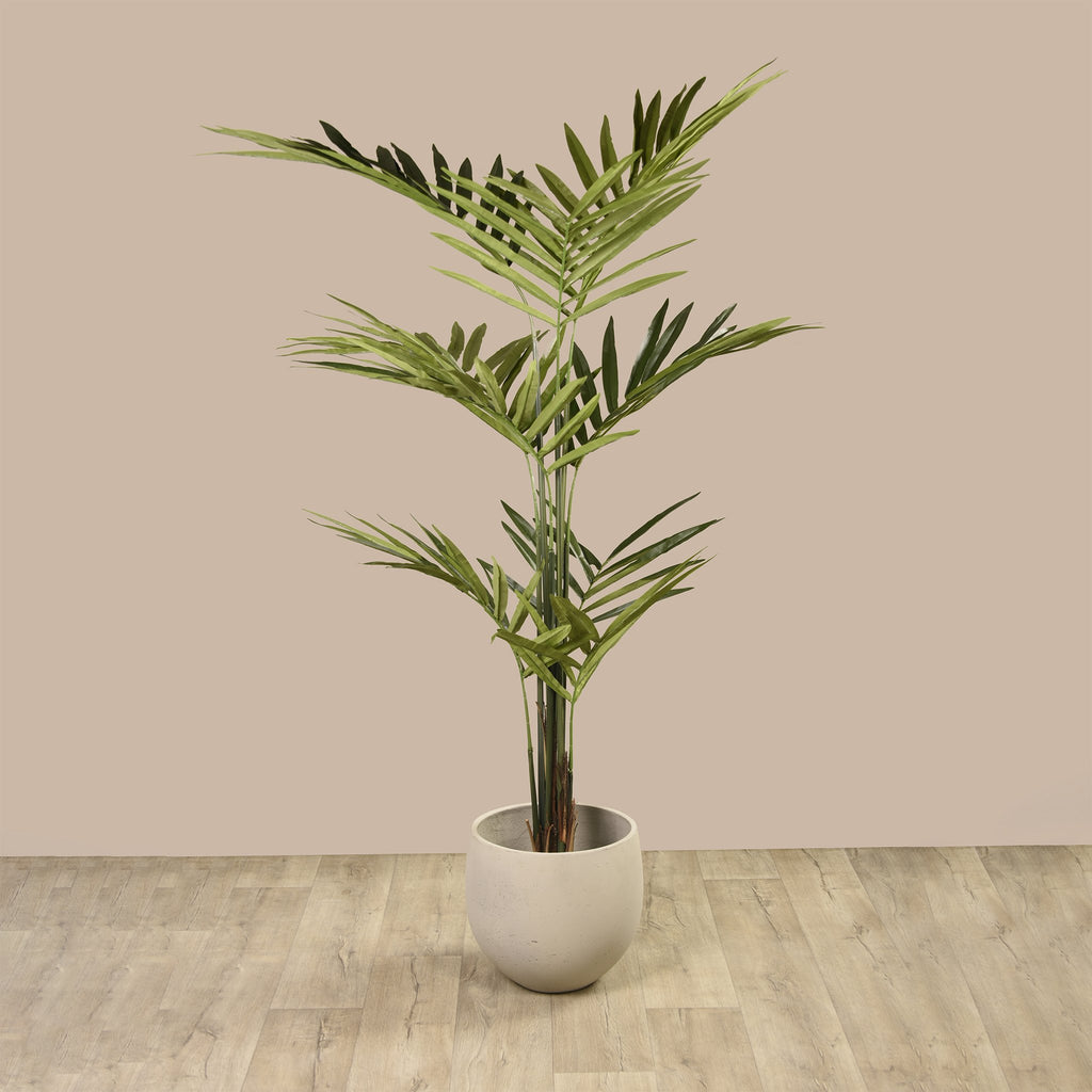 Bloomr Trees Kentia Palm artificial flowers artificial trees artificial plants faux florals