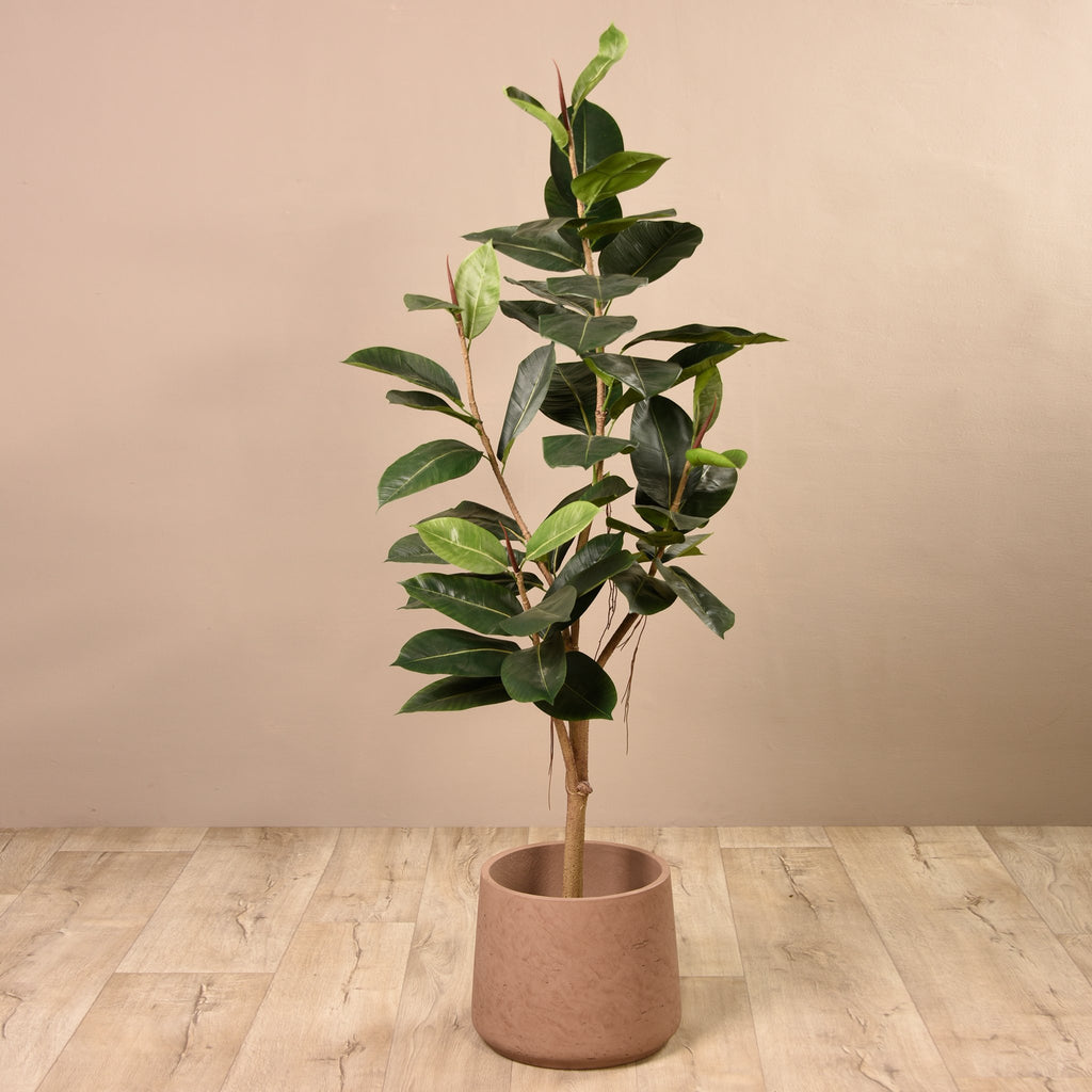 Bloomr Trees Large Rubber Plant artificial flowers artificial trees artificial plants faux florals