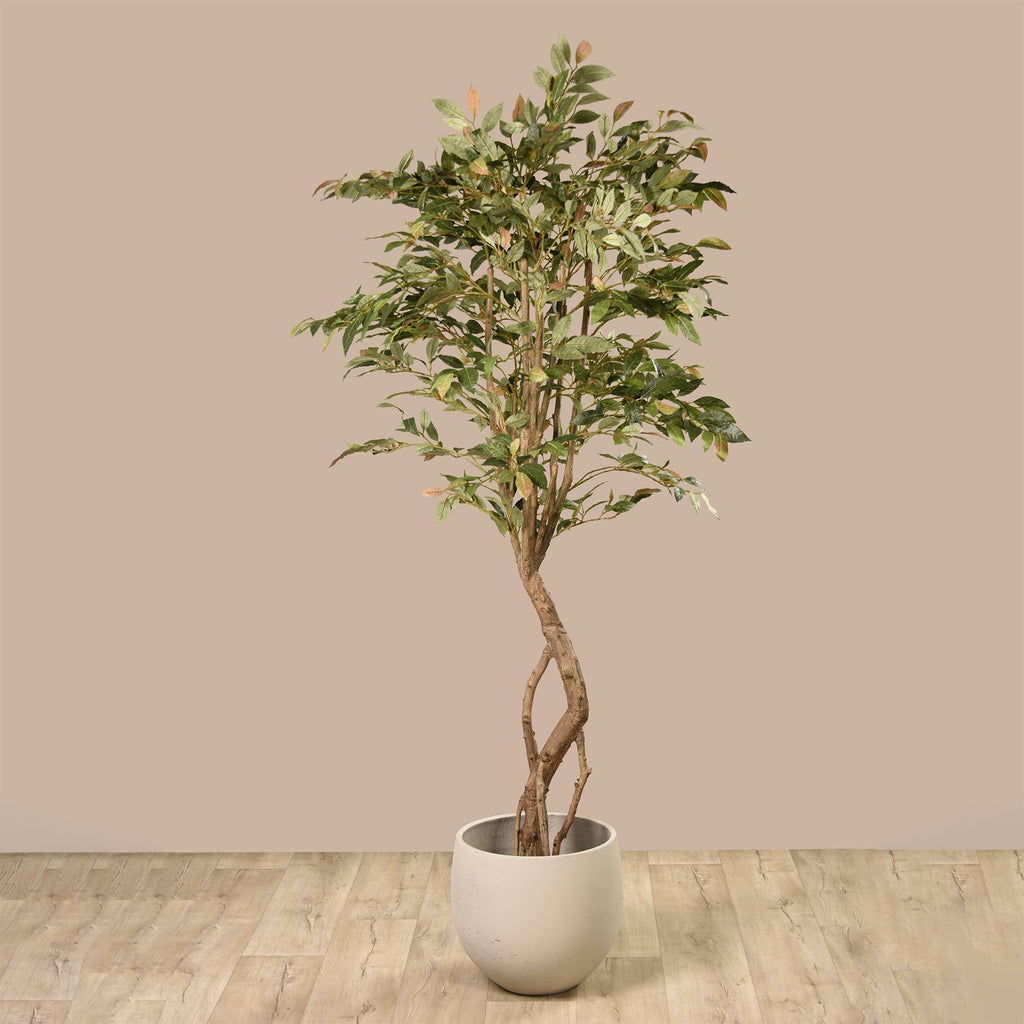 Bloomr Trees Laurel Tree artificial flowers artificial trees artificial plants faux florals