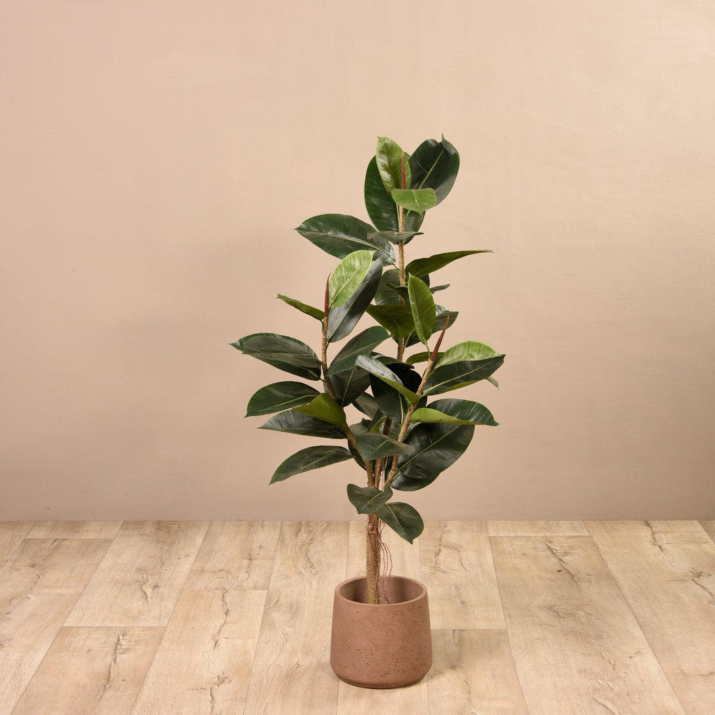 Bloomr Trees Medium Rubber Plant artificial flowers artificial trees artificial plants faux florals