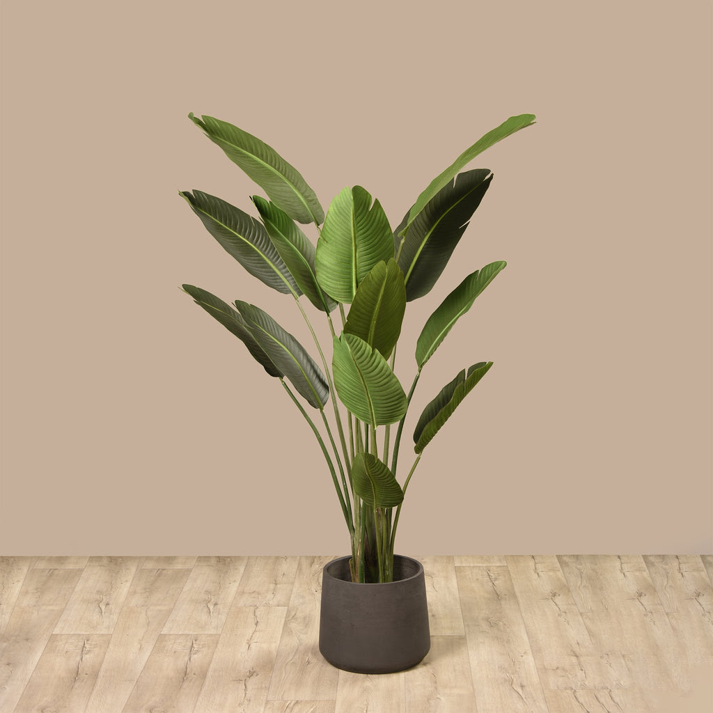 Bloomr Trees Strelitzia Plant artificial flowers artificial trees artificial plants faux florals