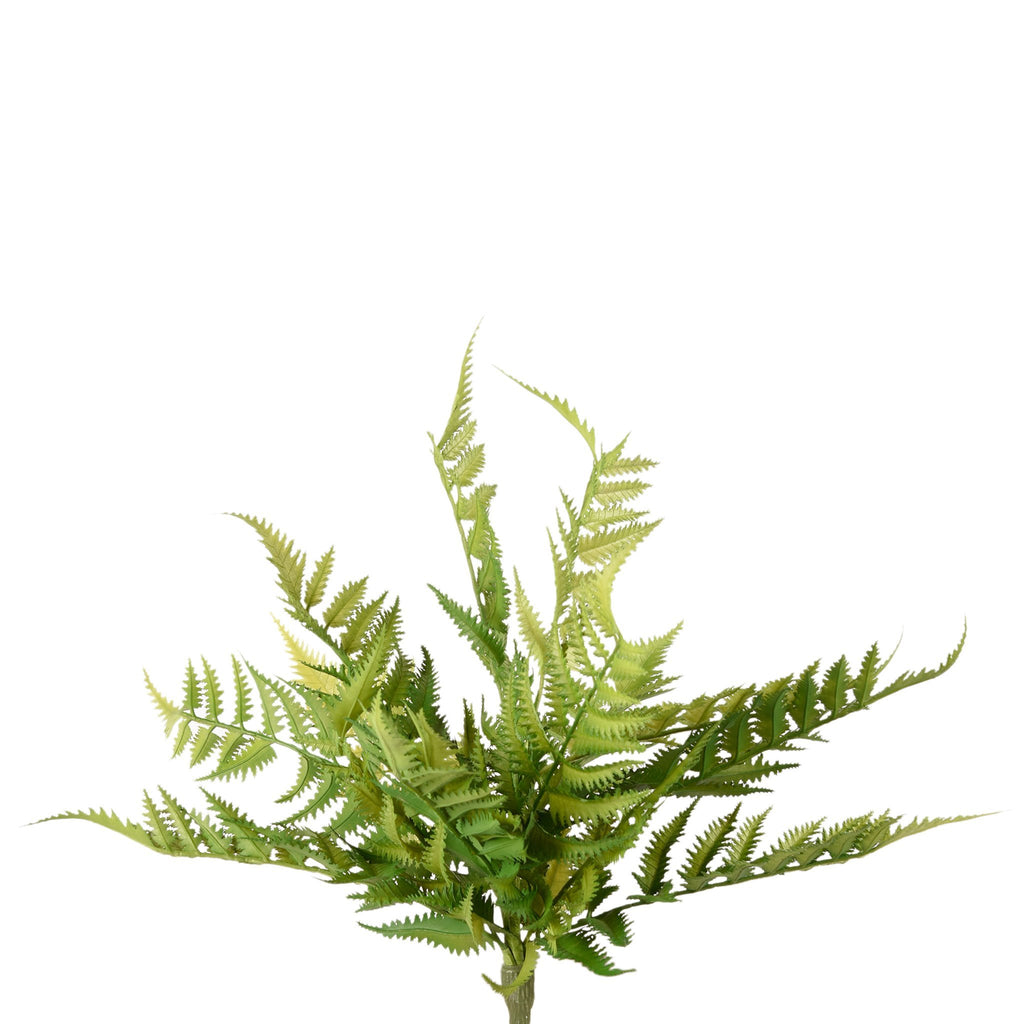 Artificial Fern, Faux Fern, Fake Fern  - Bloomr