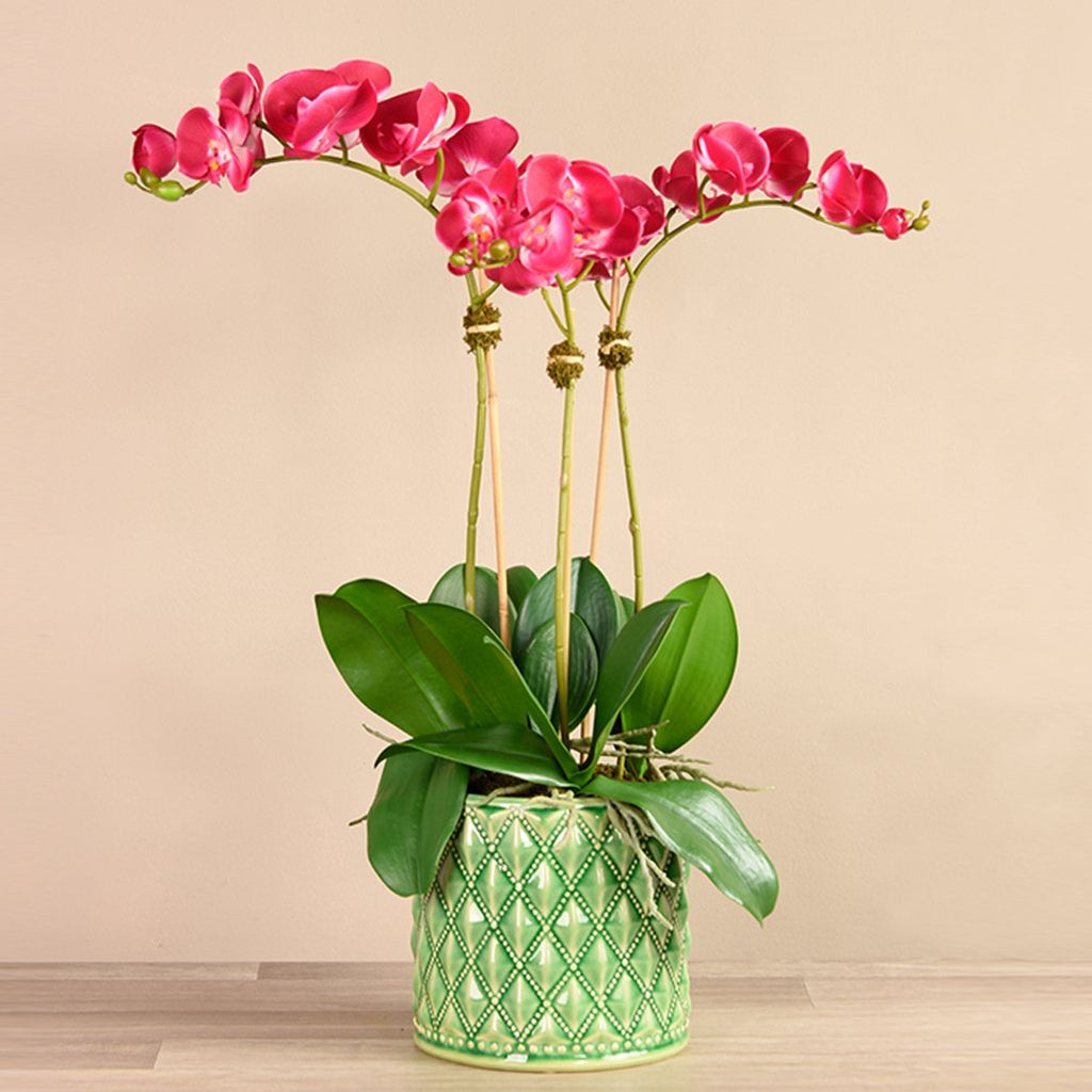 Bloomr-USA Flowers Large / Magenta Orchid Arrangement in Ceramic Vase artificial flowers artificial trees artificial plants faux florals