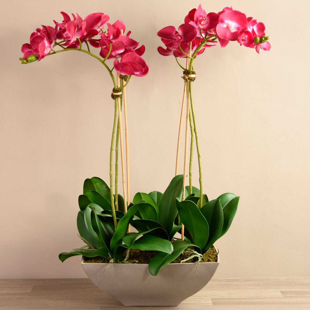 Bloomr-USA Flowers Large / Magenta Orchid Arrangement artificial flowers artificial trees artificial plants faux florals
