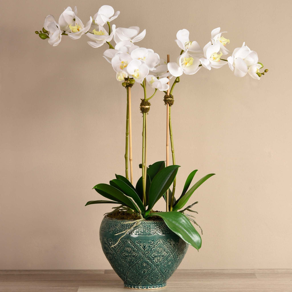 bloomr-usa Flowers Large / White Moroccan Orchid Arrangement artificial flowers artificial trees artificial plants faux florals
