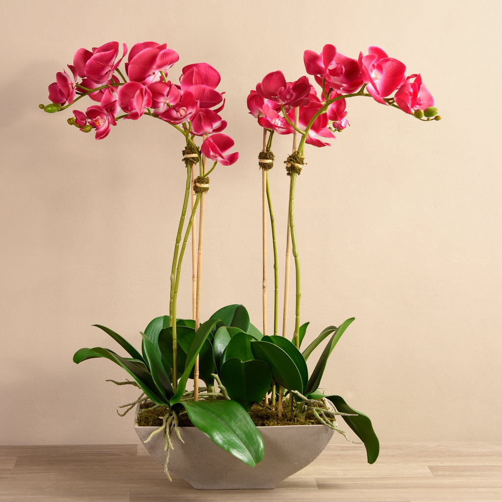 Bloomr-USA Flowers Medium / Magenta Orchid Arrangement artificial flowers artificial trees artificial plants faux florals
