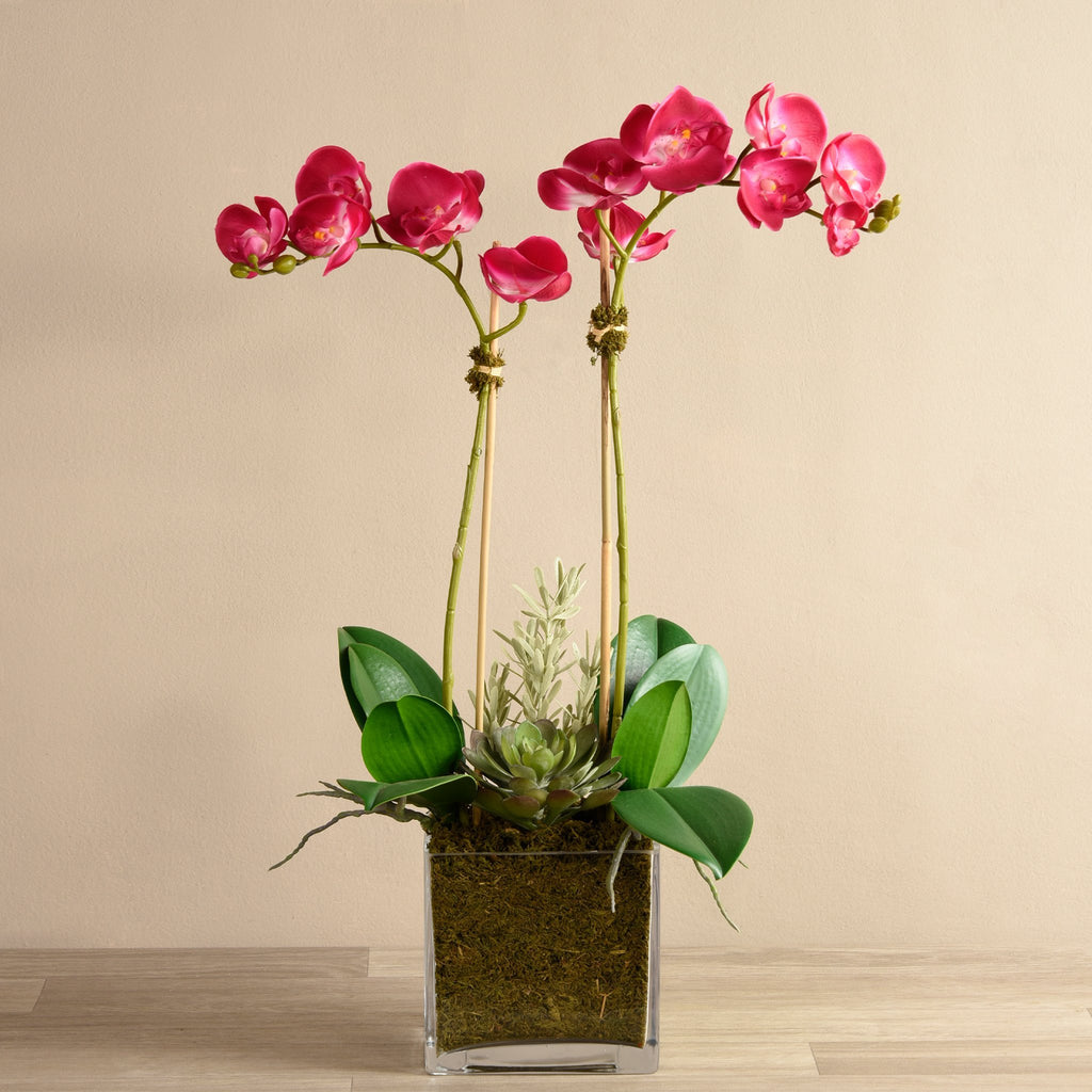 bloomr-usa Flowers Medium / Purple Orchid & Succulent Arrangement (Square Vase) artificial flowers artificial trees artificial plants faux florals