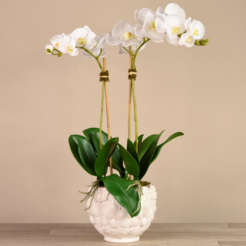 bloomr-usa Flowers Medium / White Secret Garden Orchid artificial flowers artificial trees artificial plants faux florals